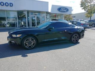Used 2015 Ford Mustang EcoBoost for sale in Mississauga, ON