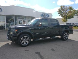 Used 2013 Ford F-150 FX4 for sale in Mississauga, ON