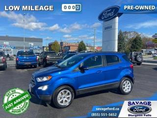 Used 2019 Ford EcoSport SE FWD  - Ex-lease - Sunroof - $140 B/W for sale in Sturgeon Falls, ON