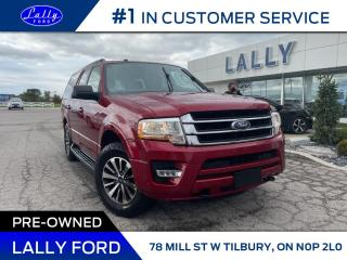 Used 2016 Ford Expedition XLT, One Owner, Moonroof, Nav, Leather! for sale in Tilbury, ON