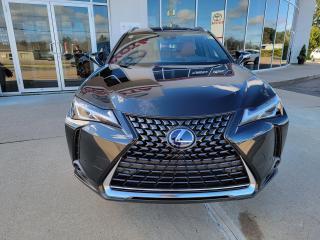 Used 2022 Lexus UX UX250h Luxury for sale in Pembroke, ON