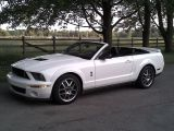 Photo of White 2009 Ford Mustang